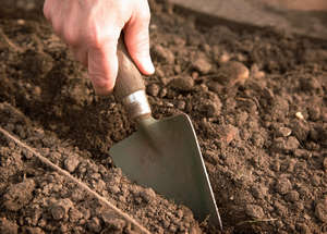 Preparing the soil for planting seeds