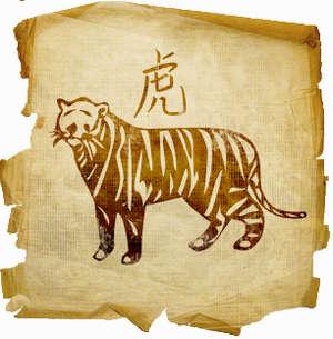 Как подходят другу тигр-тигр