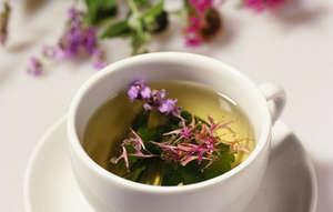 Tea from medicinal oregano
