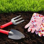 Как правильно сажать газонную траву и ухаживать за ней