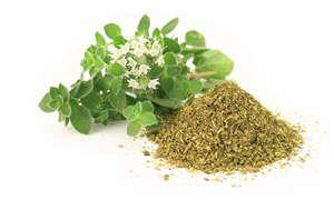 травы и чай от микробов паразитов