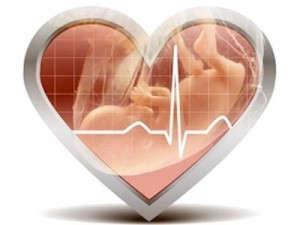 Сердцебиение плода по неделям у мальчиков и девочек (таблица нормальных показателей)
