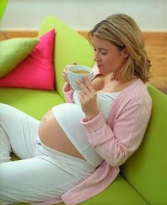 Herbal tea during pregnancy