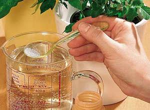 Cooking fertilizer for indoor plants