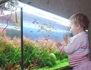 A child at the aquarium with fish