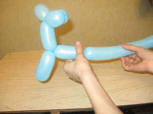 Making the torso doggie