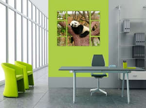Картина с пандой в офисе