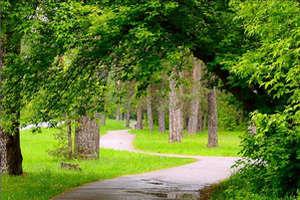 Pavilnis Regional Park