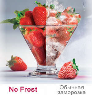 No Frost Technology
