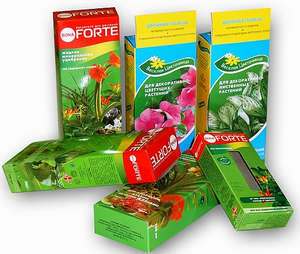 Fertilizers for indoor plants