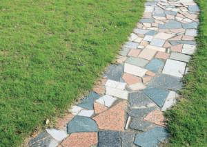 Plate path