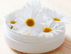 Chamomile in a jar of cream