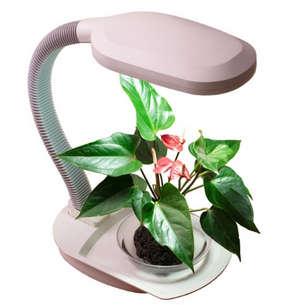 Лампа для цветка