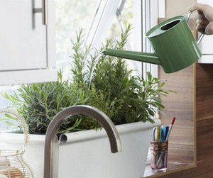 Watering Potted Plants