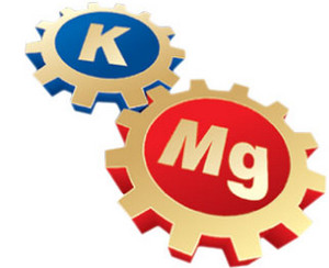 Gears with potassium and magnesium