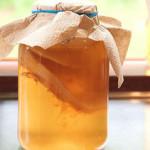 Два простых способа вырастить в домашних условиях чайный гриб