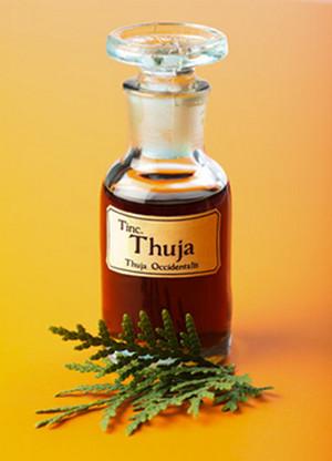 Thuja oil