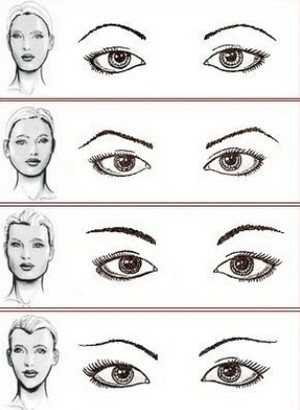 Eyebrow shapes for different face types