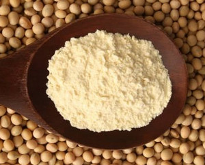 Ground Lecithin