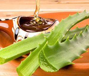 Aloe Leaf Mixing with Honey