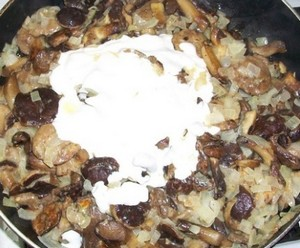 Roasting mushrooms with onions and sour cream