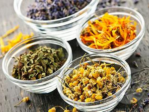Different herbs in saucers