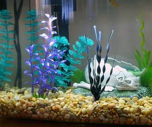 Aquarium with small pebbles