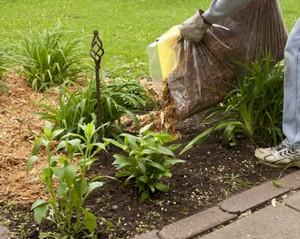 Soil preparation for mulching