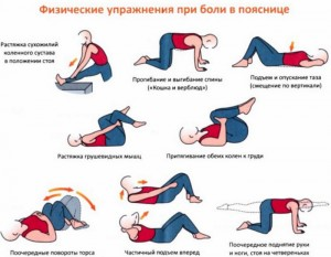 Gymnastics for the spine