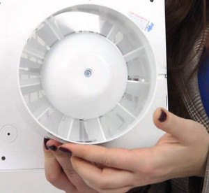 Fan with timer