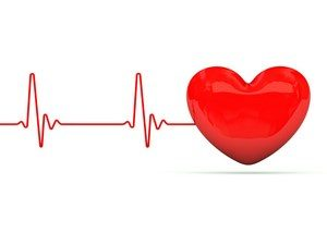 Кардиограмма и сердце