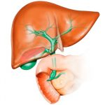 How to beat a blow to the gallbladder?