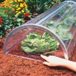 Building a greenhouse with your own hands