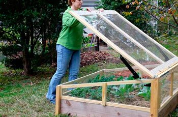 greenhouses and greenhouses with their own hands