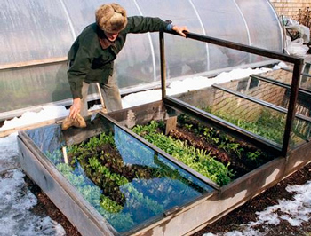 how to make a greenhouse with your own hands