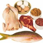 What is the essence of a diet on protein foods?