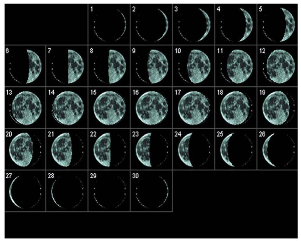 лунный календарь с картинками задней стороны случае