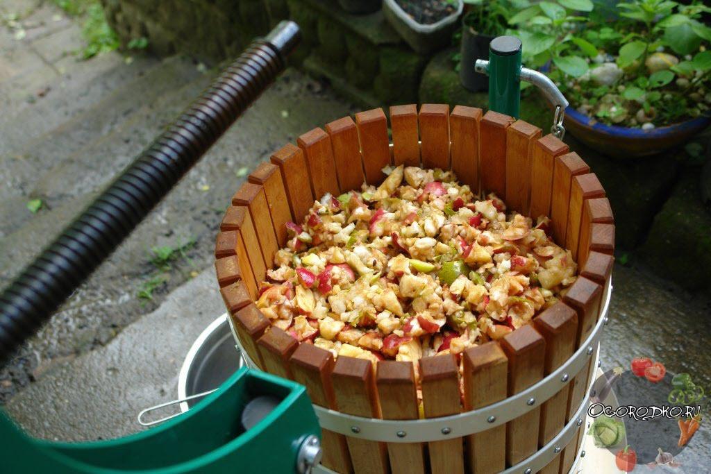 Виноградный сок из соковарки как сделать вино